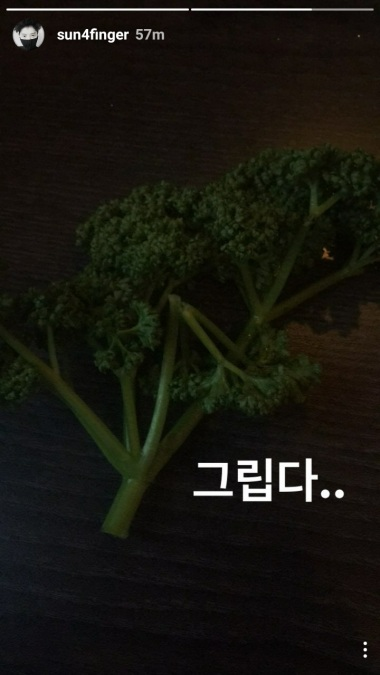 Jung Joon Young updating his Insta Story with a pic of a piece of vegetables on March 2017